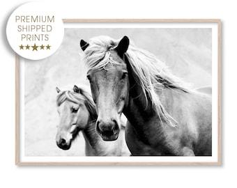 Black and White Horse Photography Print, Horse Art, Wild Horse Print