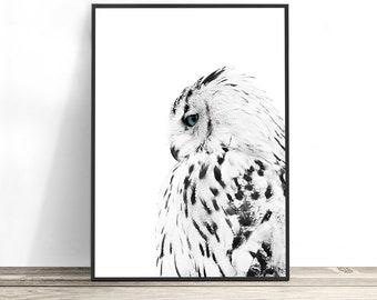 White Owl Print, Scandinavian Print, Owl Gifts, Black and White Print, Scandinavian Decor, Owl Wall Art, Bird Photography Print, Owl Decor