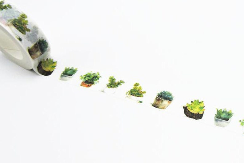 Succulent Cactus Potted Plants Green Washi Tape Masking Tape image 0