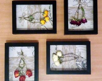 Ivy - 4 frame floral shadowbox set
