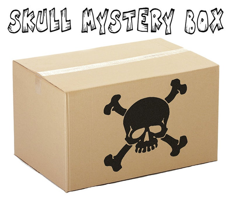 Mystery Box of Skulls Skull Decor Sugar Skulls Halloween image 0