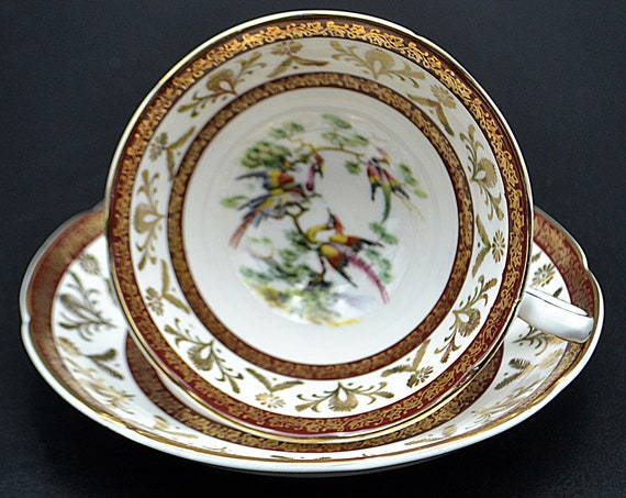 Royal Grafton 'Birds Of Paradise' Teacup And Saucer