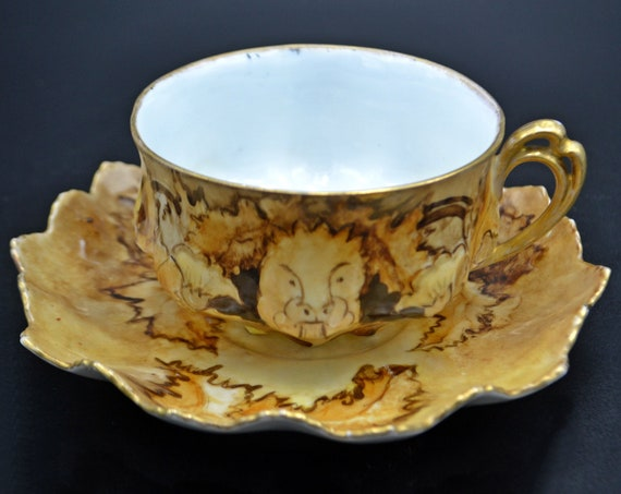Antique MZ (Moritz Zdekauer) Austria Teacup And Saucer, Hand Painted Bone China
