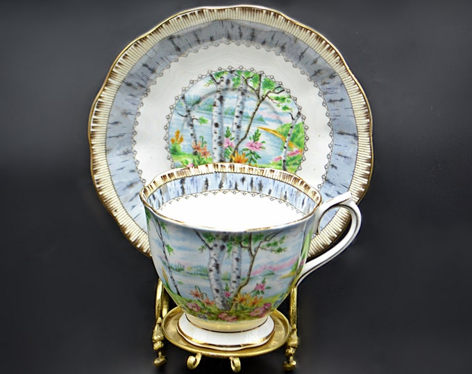 Royal Albert Silver Birch Teacup And Saucer, Discontinued