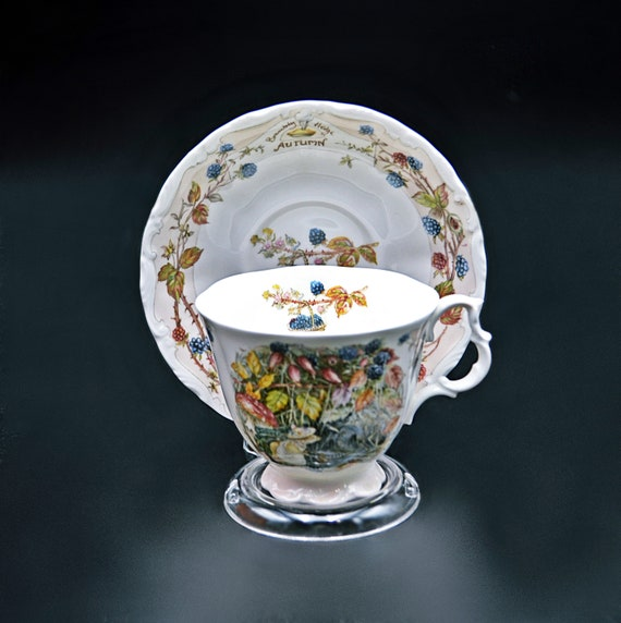 Royal Doulton Brambly Hedge Autumn Teacup And Saucer