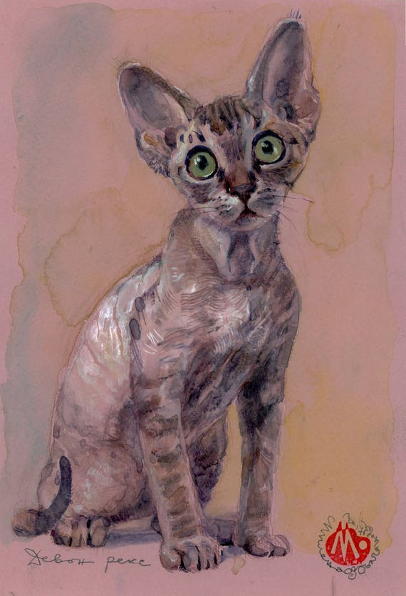 Devon Rex Cat Painting Cat Art Print Of Watercolour Painting Etsy