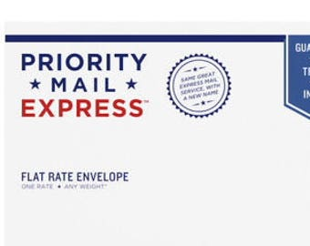 Priority Express Mail Envelope Option