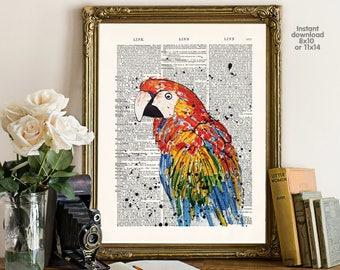 Jungle Decor, Parrot on Branch Art Print, Kids Room Decor, Nursery Art, Animal Prints, Boys Bedroom Wall Artwork, Childrens Room Decor Art