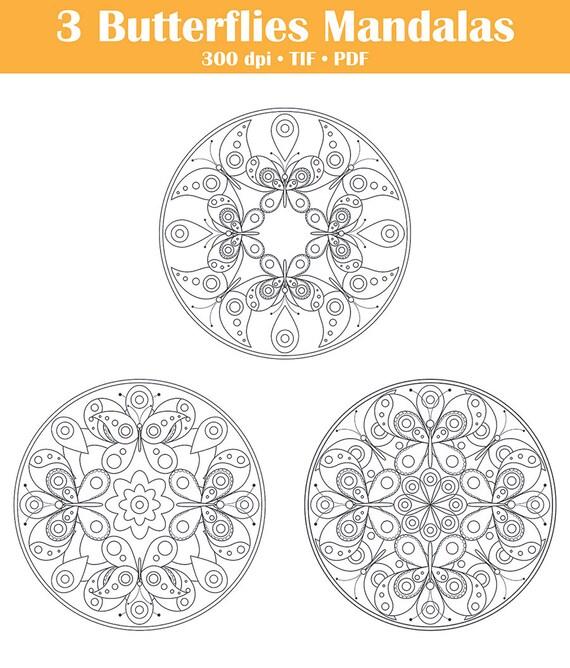 Mandalas de mariposa para colorear páginas niños adultos | Etsy