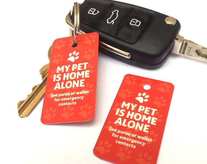Home Alone Pet Safety fob key ring