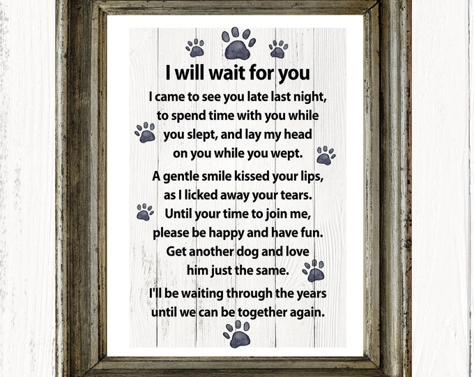 I will wait for you… a message from your dog