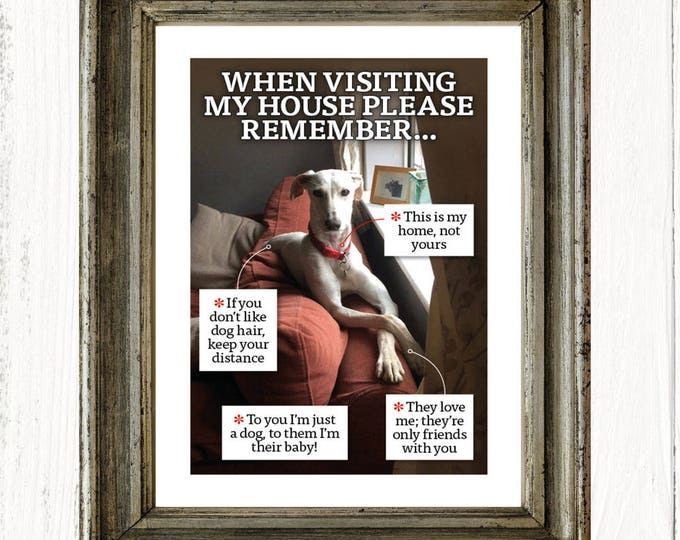 Put your dog or cat in the frame – personalised A4 print of your dog or cat, art print, Father's Day gifts, birthday gifts, unframed