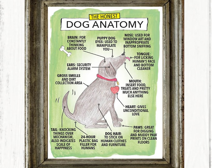 The Honest Dog Anatomy funny art print, Christmas gifts, Birthday gifts