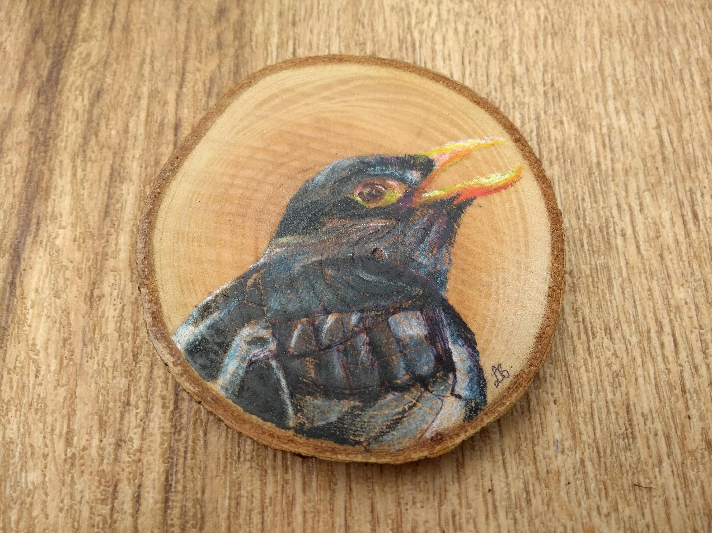 Blackbird Hand Drawn Original Wooden Coaster. British bird | Etsy