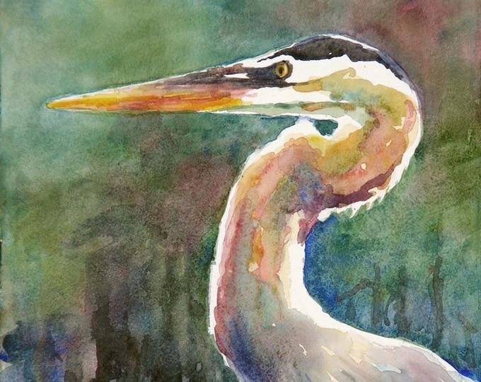 Blue heron, marsh bird, watercolor art print
