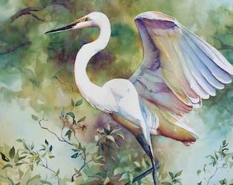 Great egret, white marsh bird, heron, watercolor art print