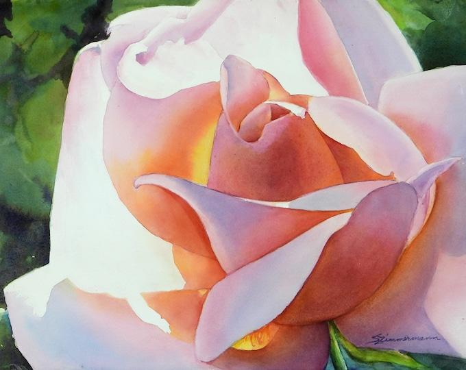 sunlit pink rose, salmon rose, watercolor print