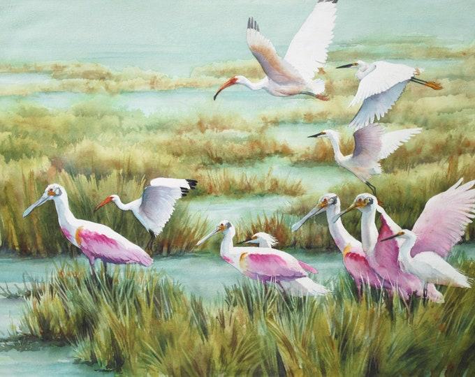 Roseate spoonbills, egrets, ibis, in the Louisiana marsh landscape print