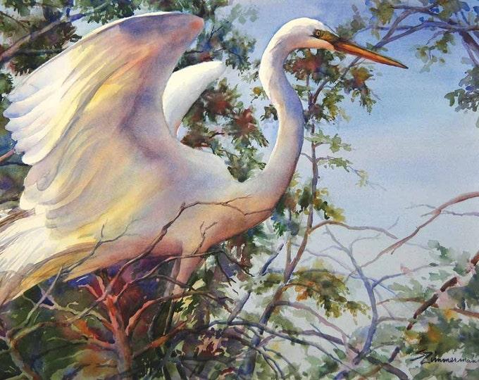 Great egret, white bird, wading bird, Louisiana watercolor art print