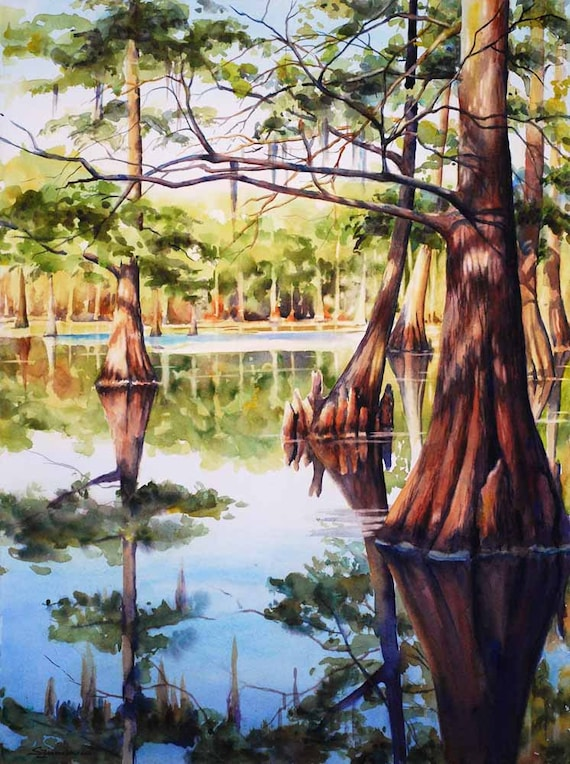 Cypress trees in Louisiana swamp, lake, watercolor art print