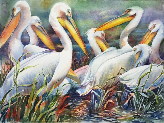 White pelicans, Louisiana wildlife birds watercolor art print