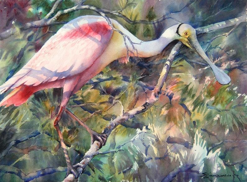 Roseate spoonbill pink bird Louisiana marsh bird watercolor image 0