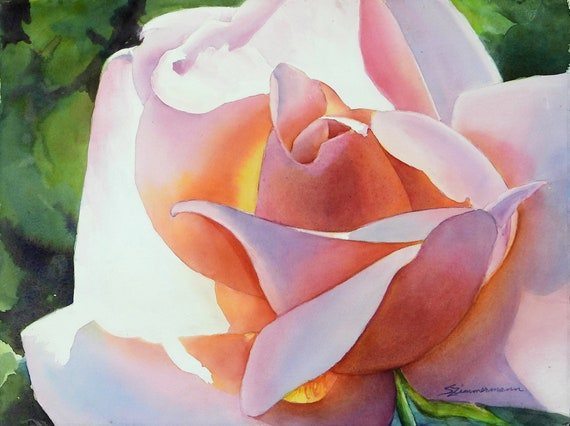 sunlit pink rose, salmon rose, watercolor print
