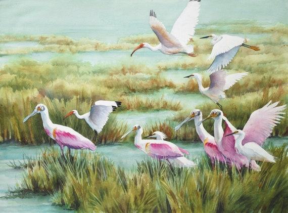 Roseate spoonbills, egrets, ibis, in the Louisiana marsh landscape print