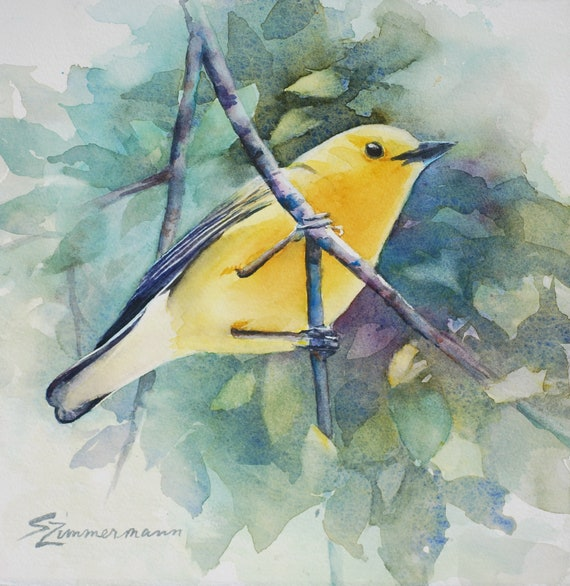 Prothonotary Warbler, original watercolor painting