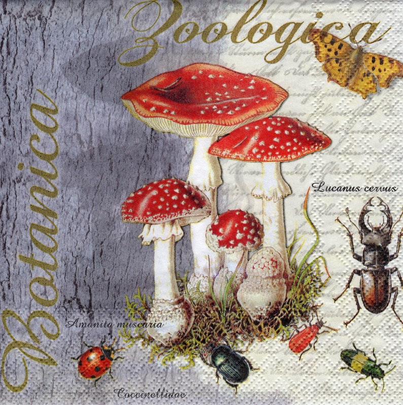 Party Craft for Decoupage 4 x Vintage PAPER Table NAPKINS Toadstool