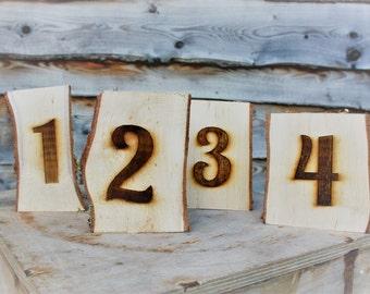 1-10 Log Slice Table Numbers