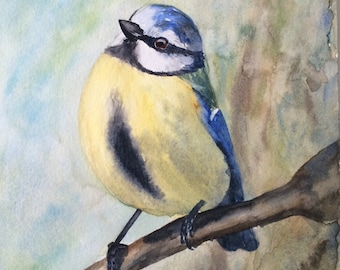 Blue Tit Bird Original Watercolor Painting
