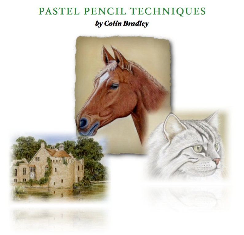 Pastel Pencil Techniques E-Book  Bonus Eye of the Tiger image 0