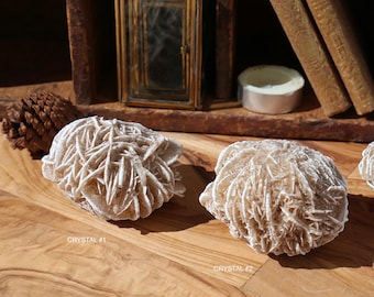 Large Desert Rose Selenite Palmstones