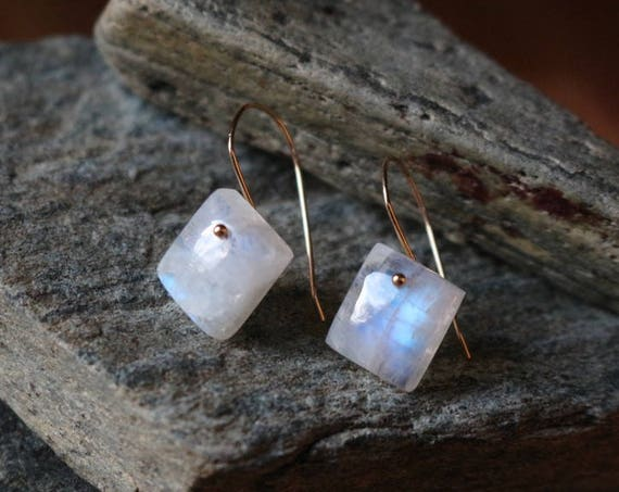 Rainbow Moonstone and 14k Gold Wire Dangle Earrings