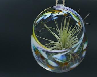 HANABI  handblown atrium -terrarium - birdfeeder