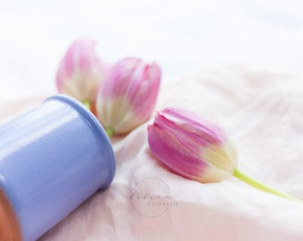Styled Stock Photography | Spring Florals | Pink Tulips | Pantone Color of The Year | Rose Quartz & Serenity | Instant Download