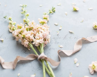 Styled Stock Photography | Blush Flowers | Stocks | Pink Silk Ribbon | Instant Download JPEG
