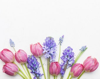 Styled Stock Photography | Spring Florals | Pantone Color of The Year | Rose Quartz & Serenity | Instant Download