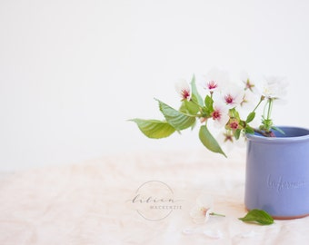 Styled Stock Photography | Spring Florals | Cherry Blossoms | Pantone Color of The Year | Rose Quartz & Serenity | Instant Download