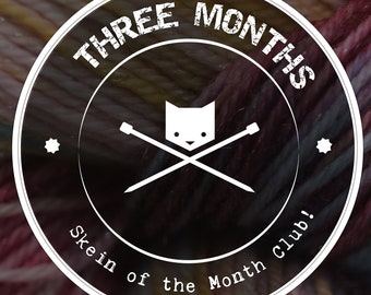 Yarn of the Month Sock Yarn Club Subscription |  Exclusive Hand-Dyed Yarn | Monthly Surprise Mystery Yarn | 3 Month (Start June 2018)