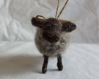 Small ewe (gray) with loop