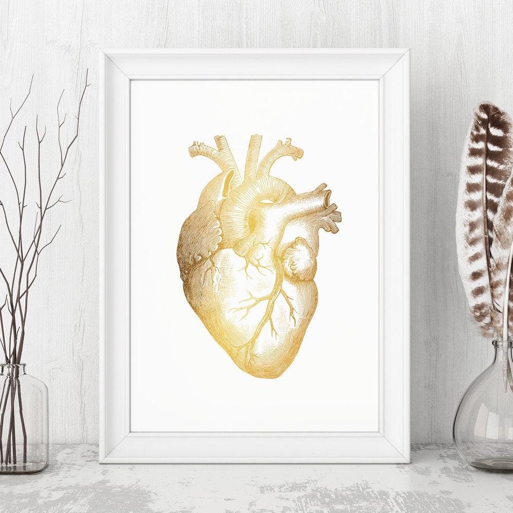 Gold Foil Heart Anatomical Art Human Heart Poster Gold | Etsy