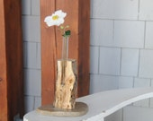 Bud Vase made from spalted maple & upcycled test tube with a stone base.