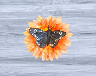 Orange Sunflower and Black Butterfly Hair Clip