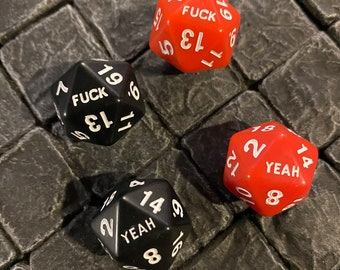 FOUR F*uck Yeah 20 Sided Dice - 2 Black and 2 Red - D20s - Dungeons and Dragons, Pathfinder  Dungeon Master, DM, RPG