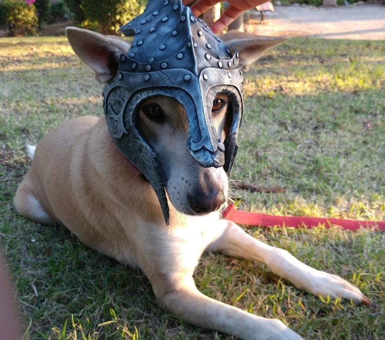 Dogs Cosplay Knight helmet