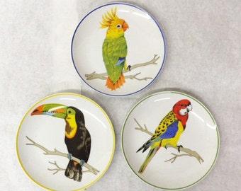 Tropical Bird Plates (Set of 8)
