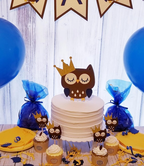 Awe Inspiring Owl Cake Topper Owl Baby Shower Owl Birthday Toppers Owl Etsy Personalised Birthday Cards Sponlily Jamesorg