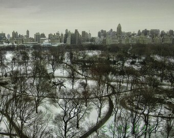 Central Park Panoramic